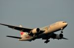 tomo@Germanyさんが、羽田空港で撮影した日本航空 777-246の航空フォト(写真)