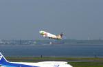 黒霧島さんが、羽田空港で撮影したソラシド エア 737-43Qの航空フォト(写真)