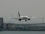 YASKYさんが、羽田空港で撮影したスカイマーク 767-36N/ERの航空フォト(写真)