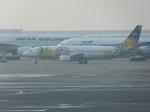 ConAmore84さんが、羽田空港で撮影したソラシド エア 737-43Qの航空フォト(写真)