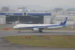 meijeanさんが、福岡空港で撮影した全日空 A321-131の航空フォト(写真)
