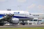 Kuuさんが、鹿児島空港で撮影した全日空 A320-211の航空フォト(写真)