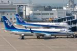 e767awacsさんが、中部国際空港で撮影した全日空 737-881の航空フォト(写真)
