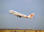 たぁさんが、羽田空港で撮影したJALウェイズ 747-346の航空フォト(写真)