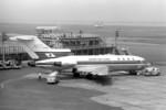 apphgさんが、羽田空港で撮影した日本航空 727-89の航空フォト(写真)