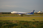 tsubameさんが、佐賀空港で撮影した全日空 A320-211の航空フォト(写真)