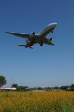 福岡空港 - Fukuoka Airport [FUK/RJFF]で撮影されたアシアナ航空 - Asiana Airlines [OZ/AAR]の航空機写真