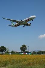 pringlesさんが、福岡空港で撮影したエバー航空 A330-302Xの航空フォト(写真)
