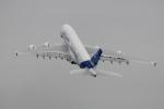 Koenig117さんが、ラメンスコエ空港で撮影したエアバス A380-861の航空フォト(写真)