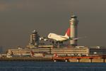 うまやどのおいるさんが、羽田空港で撮影した日本航空 747-446Dの航空フォト(写真)
