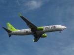 aquaさんが、羽田空港で撮影したソラシド エア 737-86Nの航空フォト(写真)