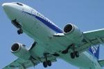 まえちんさんが、下地島空港で撮影したANAウイングス 737-54Kの航空フォト(写真)