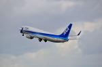B737-781さんが、秋田空港で撮影した全日空 737-881の航空フォト(写真)
