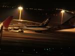 japanair787-8さんが、羽田空港で撮影した全日空 747-481の航空フォト(写真)