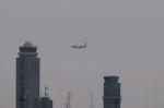 木人さんが、成田国際空港で撮影したエアアジア・ジャパン(〜2013) A320-216の航空フォト(写真)
