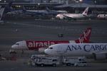 mameshibaさんが、成田国際空港で撮影したエアアジア・ジャパン(〜2013) A320-216の航空フォト(写真)