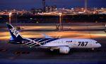tomo@Germanyさんが、羽田空港で撮影した全日空 787-881の航空フォト(写真)