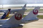 黒霧島さんが、羽田空港で撮影した日本航空 747-446Dの航空フォト(写真)