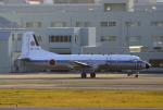 SH60J121さんが、春日基地で撮影した航空自衛隊 YS-11A-402NTの航空フォト(写真)