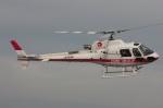 mountainhomeさんが、舞洲ヘリポートで撮影したマルナカホールディングス AS350B3 Ecureuilの航空フォト(写真)