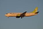 まえちゃさんが、羽田空港で撮影したソラシド エア 737-4Y0の航空フォト(写真)
