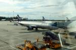 Koenig117さんが、シェレメーチエヴォ国際空港で撮影したアエロフロート・ロシア航空 A321-211の航空フォト(写真)