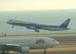 Willieさんが、羽田空港で撮影した全日空 A321-131の航空フォト(写真)