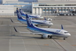meijeanさんが、中部国際空港で撮影した全日空 737-781の航空フォト(写真)