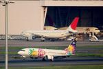 mameshibaさんが、羽田空港で撮影した日本航空 A300B4-622Rの航空フォト(写真)