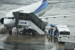 アローズさんが、福岡空港で撮影した全日空 737-881の航空フォト(写真)