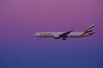PASSENGERさんが、成田国際空港で撮影したエミレーツ航空 777-31H/ERの航空フォト(写真)