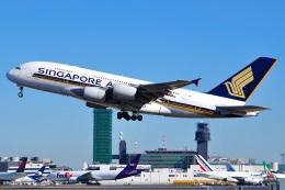 Atsugi R4さんが、成田国際空港で撮影したシンガポール航空 A380-841の航空フォト(写真)