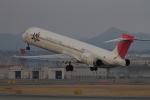 はっさくさんが、伊丹空港で撮影した日本航空 MD-90-30の航空フォト(写真)