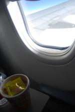 ij1052の搭乗レビュー写真