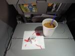 AA2600の搭乗レビュー写真
