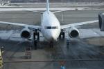 写真の種類:搭乗時の写真一般