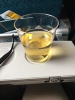 VN301の搭乗レビュー写真