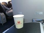 JL452の搭乗レビュー写真