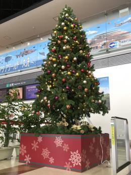 イベント画像 1枚目:茨城空港クリスマスツリー