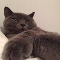 yumitaroさんのプロフィール画像