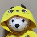 kaeru6006さんのプロフィール画像