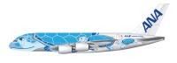 ニュース画像:ANAのA380、特別塗装機は空飛ぶウミガメ「FLYING HONU」に
