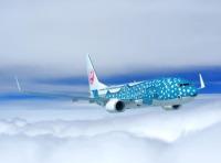 ニュース画像:JTA、11月に737-800の「新ジンベエジェット」就航を決定