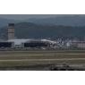 ニュース画像 8枚目:定期便を運航する全日空は東北フラワージェット「JA85AN」を使用