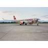 ニュース画像 2枚目:12カ月間にわたり特別塗装で運航される