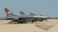 ニュース画像:アメリカ空軍36FSフライング・フレンズ、100周年を記念した尾翼を披露