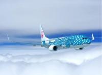 ニュース画像:日本トランスオーシャン航空、2018年度入社の運航乗務員訓練生を採用へ