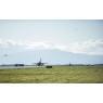 ニュース画像 3枚目:ウィッビーアイランド海軍航空基地から展開するEA-18Gと訓練
