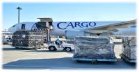 ニュース画像 1枚目:成田空港の貨物取り扱いイメージ