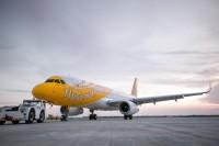 ニュース画像 1枚目:スクート、A320 イメージ
